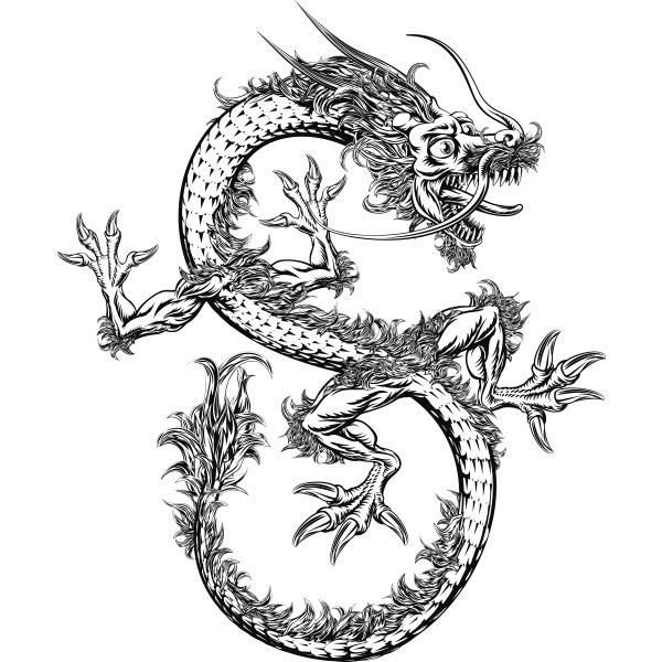 Dragon Chinois dragon chinois - tatwotoi